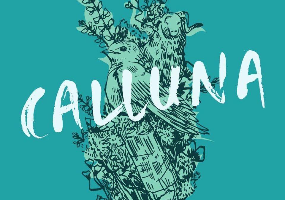 Calluna Festival 28.-29.08.2020